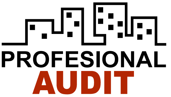 Profesional Audit