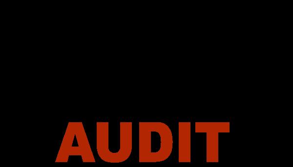 Profesional Audit